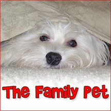 The Family Pet pet radio and podcast