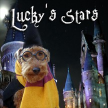 Lucky's Stars pet radio and podcast