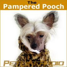The Pampered Pooch pet radio and podcast