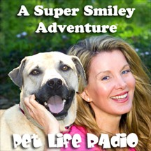 A Super Smiley Adventure pet radio and podcast
