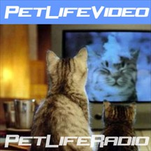 Pet Life Video weekly pet videos