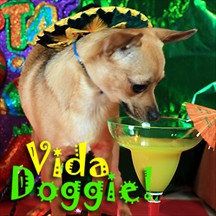 Vida Doggie pet radio and podcast