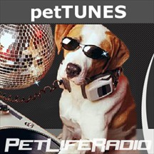 PetTunes pet music channel
