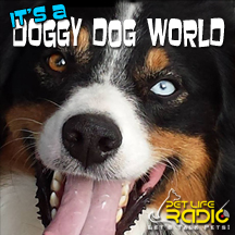It's A Doggy Dog World dogs radio and podcast