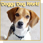 pet podcast - It's A Doggy Dog World-Dogs as pets