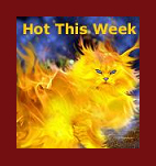 Check out what's  hot on Pet Life Radio this week!