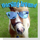 pet podcast - Horsing Around - all about horses