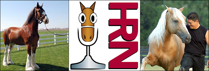 Horse Radio Network on Pet Life Radio