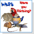 pet podcast - What Were You Thinking-Exotic animals as pets