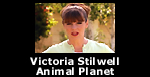Victoria Stilwell on 'It's Me or The Dog' on Animal Planet