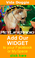 Add our widget to your Facebook or MySpace!