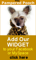 Get the Pampered Pooch Widget for your MySpace, Blog or Facebook!