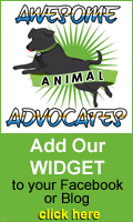 Add our widget to your Facebook or Blog!