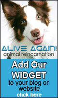Get the Alive Again widget for your website or blog!