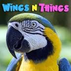 WingsNThings - Birds & Parrots as Pets - All About Pet Birds - Pets & Animals on Pet Life Radio (PetLifeRadio.com)
